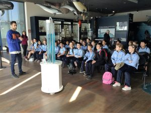 YEAR 5 Trip to Museo Alborania of Aula del Mar in Málaga